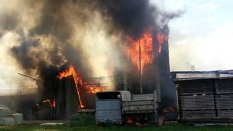 Der Stall in Möriken fiel im September 2013 den Flammen zum Opfer.