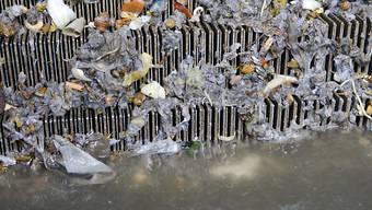 In Zeiten des vermehrten Homeoffice wurden in den Kläranlagen vermehrt Windeln und Wattestäbchen im WC entsorgt. (Symbolbild)