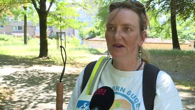 Salem-Spital: Kein Eintritt für Blindenhunde