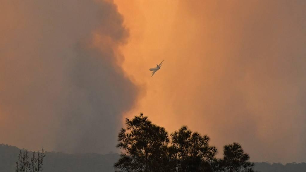 In Australien versucht man die Flammen mithilfe von Flugzeugen zu retten.