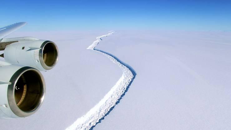 Bereits auf dieser Aufnahme vom 10. November 2016 ist der Riss im Larsen C Eisschelf deutlich zu sehen.
