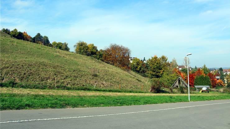 Die Bergdietiker entscheiden am Sonntag über das Land Rai zwischen der Föhretstrasse (im Bild) und der Bergstrasse.