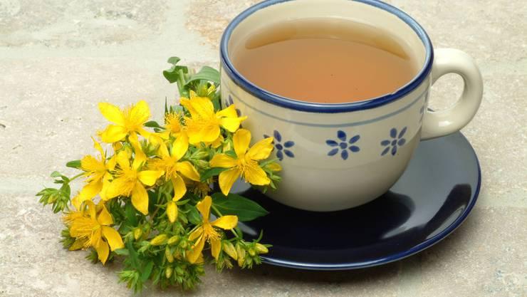 Weiter unten im Text erfahren Sie, wie Johanniskraut-Tee zubereitet wird.