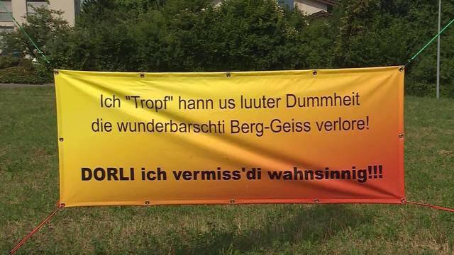 "Findet ""Berg-Geiss"" Dorli"