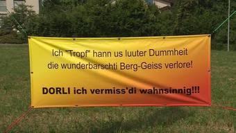 """Ein mysteriöses Plakat ziert den Strassenrand beim Autobahnzubringer in Lenzburg. """"Die wunderbarschti Berg-Geiss"""" sei verloren. Es bleibt beim Rätsel."""