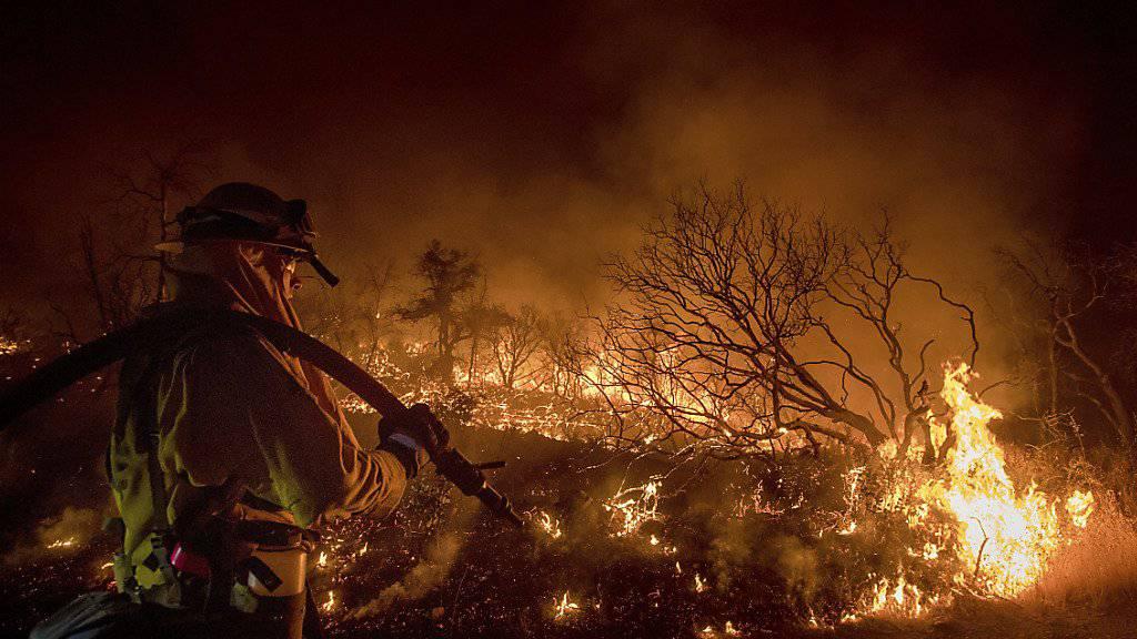 Waldbrände halten an der Westküste Kanadas und der USA die Feuerwehren auf Trab. Bei Oroville in der Nähe der kalifornischen Hauptstadt Sacramento werden rund zehn Häuser zerstört.