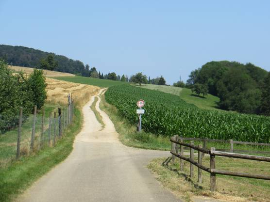 3/4 Stunde war der Weg von Sichtern zurück nach Hause, richtig Frenkendorf im Rüttimattquartier