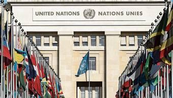 Bei der UNO werden Praktikanten oft nicht entlöhnt.