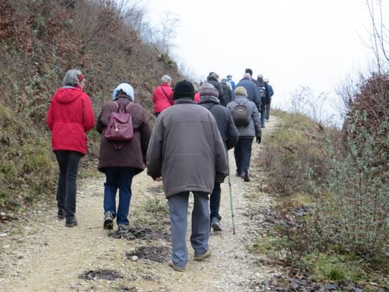 Die Wandergruppe in Richtung Aesch