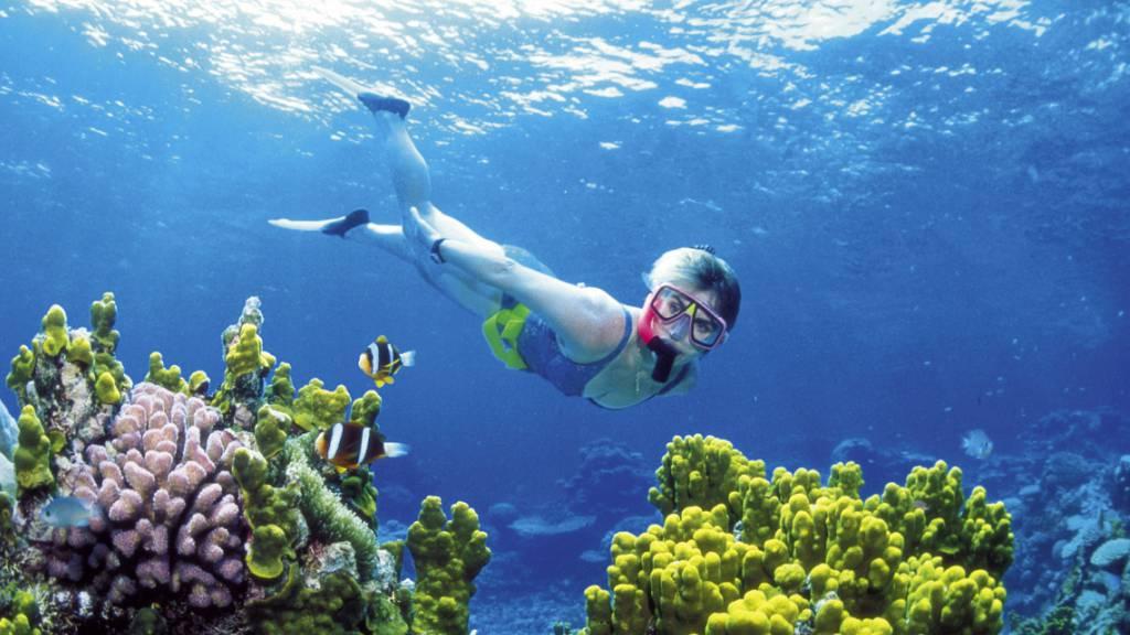 Unseco-Ausschuss setzt Great Barrier Reef auf die Rote Liste