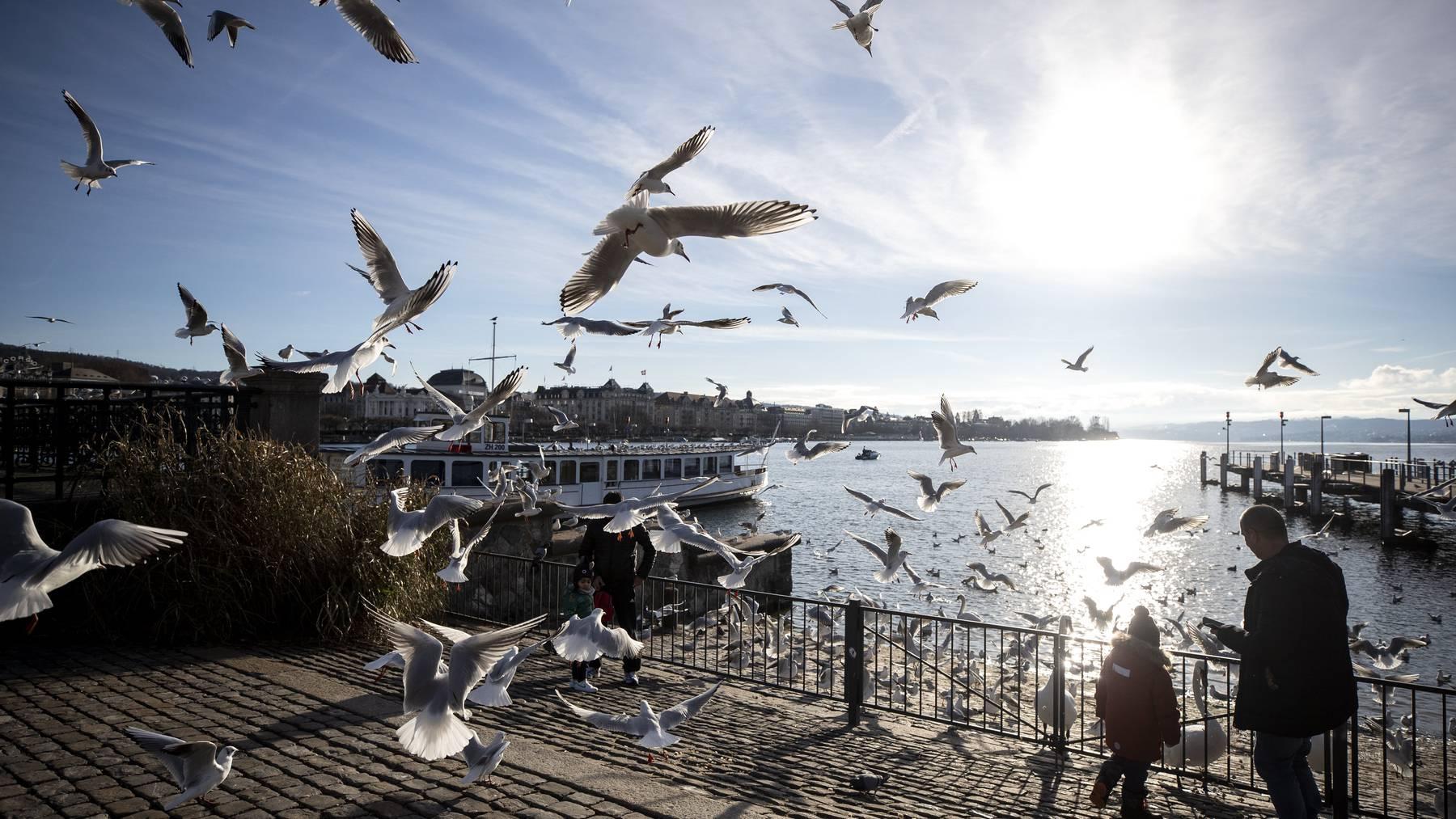 Am Stephanstag herrschten – wie hier in Zürich – warme Temperaturen und schönstes Wetter. Und in den Alpen beste Wintersportverhältnisse.