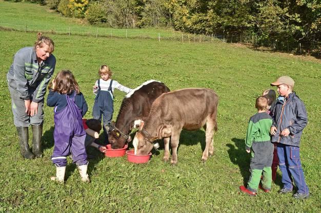Die Kinder streicheln und füttern die drei Kälber des Berghofs.