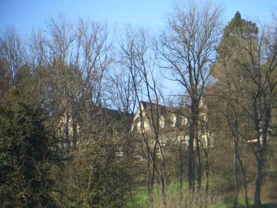 Hier einfach der Bienenberg gesehen von unserem Quartier in Frenkendorf.