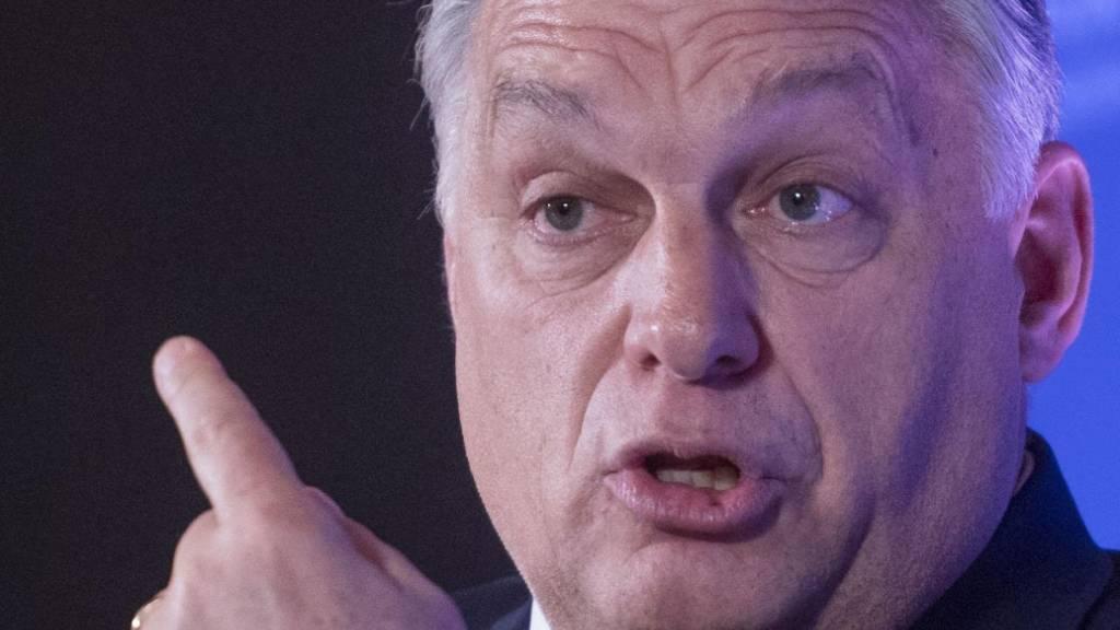 Hello Dictator! - So begrüsste der frühere EU-Kommissionschef Jean-Claude Juncker den ungarischen Regierungschef Viktor Orban.