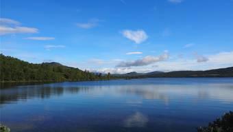 Endlose Wälder, einsame Seen: Auch Herr und Frau Solothurner zieht es immer öfters in die nordischen Landschaften.