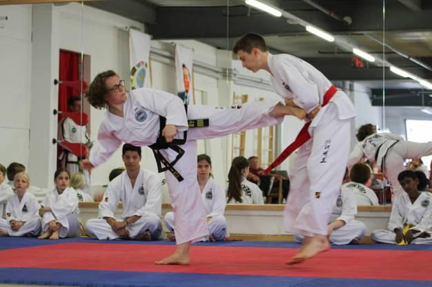 Gezielte, effektive Verteidigung gegen einen körperlichen Angriff