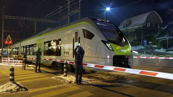 BLS kauft ein: Neue Züge des Typs Flirt im Modell