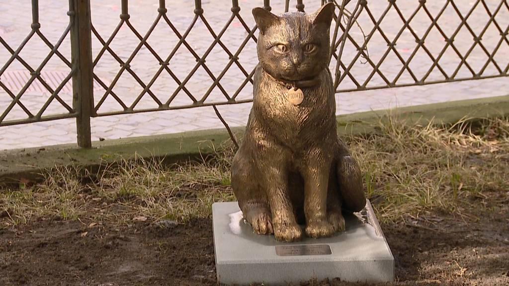 Statue von Kult-Kater Monty verschwunden