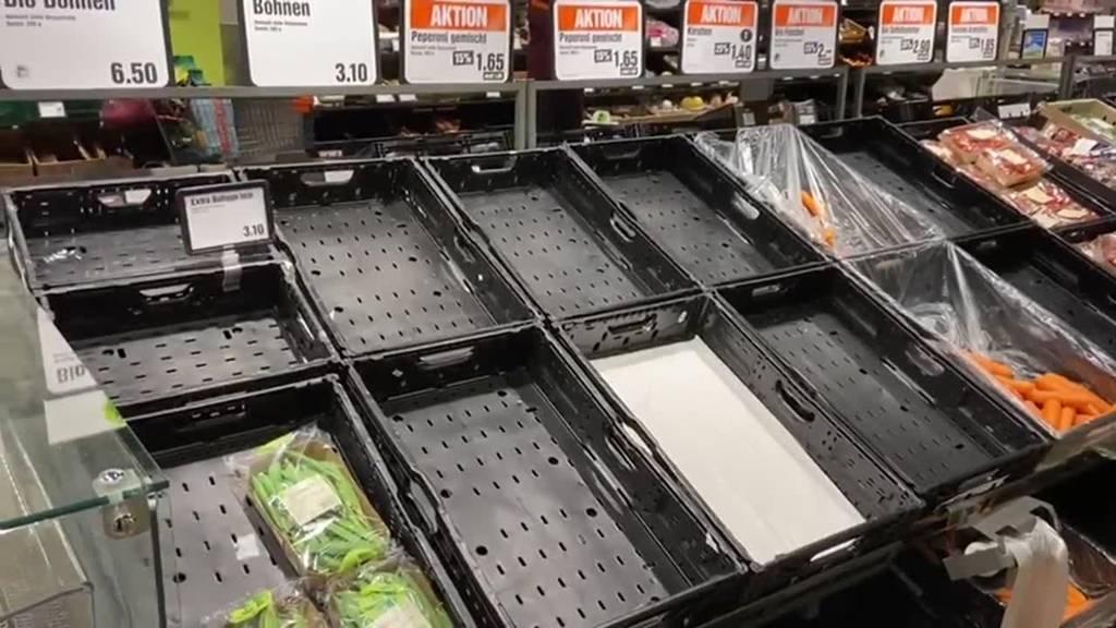Gemüsebauern schlagen Alarm – drohen uns leere Regale?