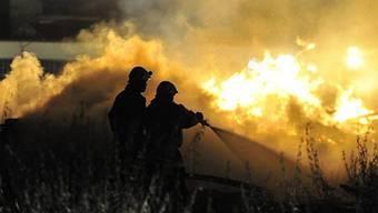 Mehr als 200 Feuerwehrleute in Arbon im Einsatz