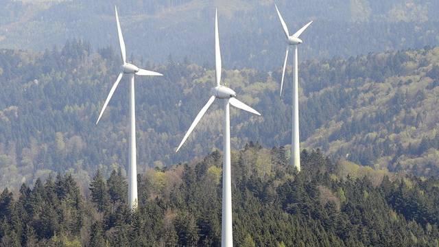 Auch im Wind steckt viel Energie