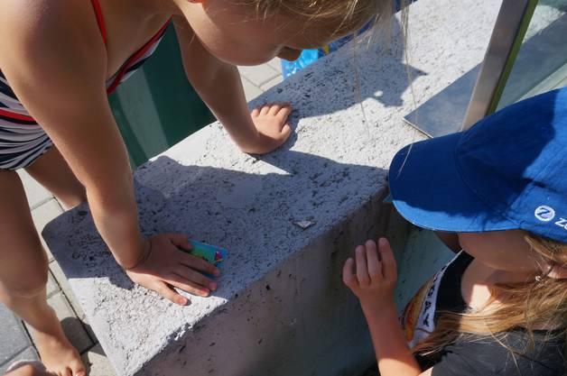 Die Kinder haben einen Schmetterling entdeckt