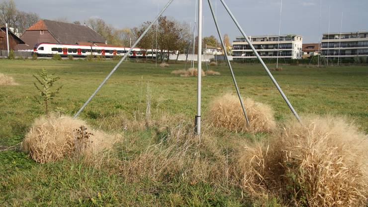 Ausgesteckt ist das Areal für den Wohnpark Wildbach ganz im Westen zwischen der SBB-Bahnlinie, dem Wildbach und der jetzigen Bebauung schon lange – doch die Anwohnerschaft wehrt sich gegen die neu geplante viergeschossige Überbauung.