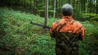 Das Jagdgesetz wurde abgelehnt. Und die Städter hatten mitzureden, was viele stört. (Symbolbild)