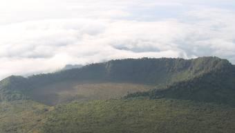 ARCHIV - Blick auf den Virunga-Nationalpark im Kongo, in dessen Nähe Dutzende Menschen entführt wurden. Foto: Jürgen Bätz/dpa