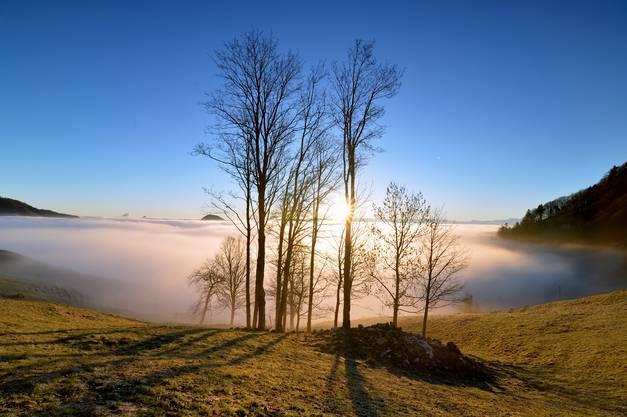 Das alte Jahr hat's schlau gemacht, Fort ist's bei Nebel und bei Nacht. Zum großen Glück für fern und nah, war auf der Stell ein andres da. Johann Peter Hebel