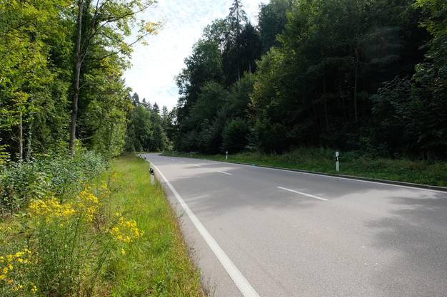 Der Töfffahrer war in Richtung Hedingen unterwegs. Dieser Teil der Luzernerstrasse liegt im Südosten von Birmensdorf. Über lange Strecken verläuft sie sehr gerade.