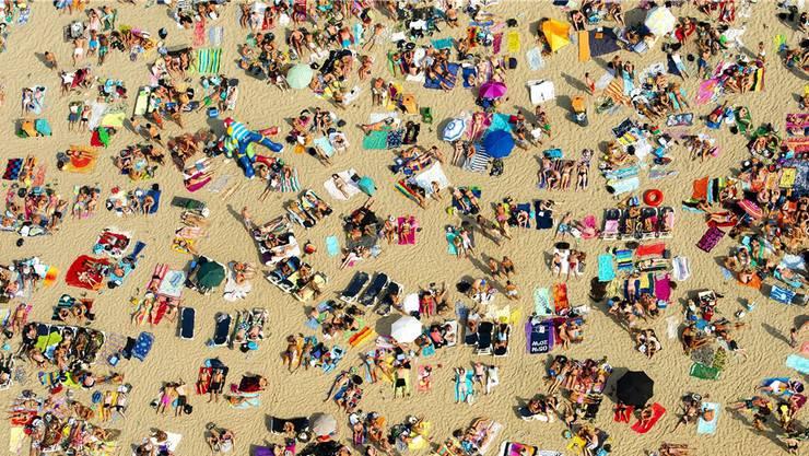 Die heissen Sommertage locken Tausende Sonnenanbeter ins Freie. Da darf der Sonnenschutz nicht fehlen. Doch was genau steckt in den Ölen, Cremes und Sprays?