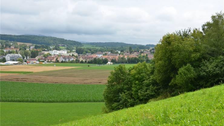 Am 8. März zeigt sich, ob Urdorf eine neue Gemeindeordnung für die Einheitsgemeinde erarbeiten muss.