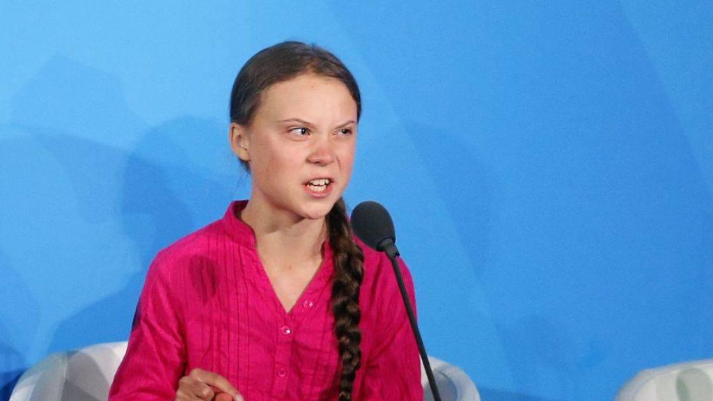 Neue Gattung der Weberknechte nach Greta Thunberg benannt