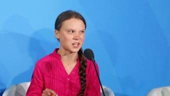Schon wieder ist eine neu entdeckte Spinnenart nach der Klimaaktivistin Greta Thunberg benannt worden. (Archivbild).