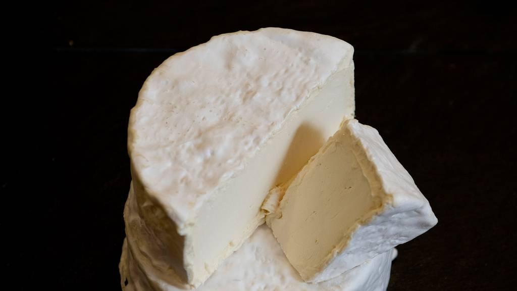 Strafverfahren gegen Schwyzer Käser – 10 Todesfälle