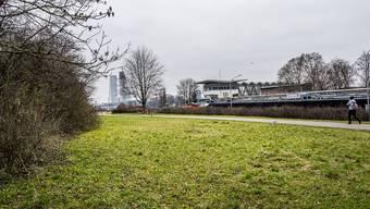 Die öffentlichen Flächen beim Kraftwerk Birsfelden sind bei Erholungssuchenden beliebt.