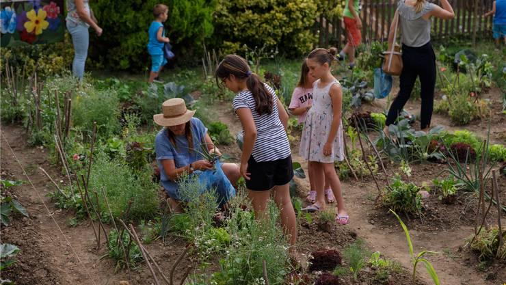 Mit einem Gartenrundgang haben die Fünftklässler die Eltern und Interessierten zu einem Gartenbesuch eingeladen. zvg