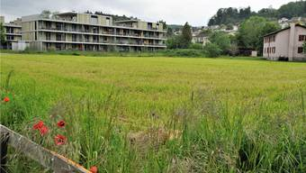 Die Ortsbürgergemeinde plant die Überbauung des Baufelds 6, der letzten Baulücke nördlich der Aarenaustrasse.