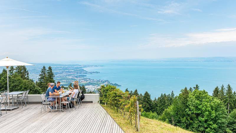 Kulinarische Wanderung von St.Gallen bis nach Rheineck.