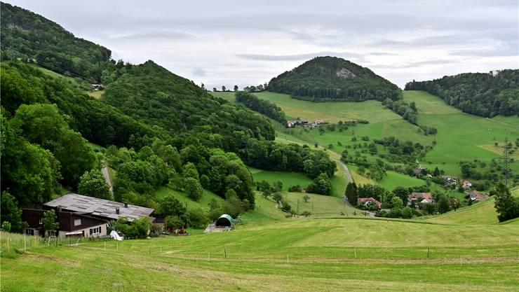 Der Berghof Rohr würde gerne mehr Futter selber produzieren. Das dafür benötigte Land ist allerdings kaum zu bekommen.