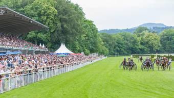 Die wohl schönste Pferderennbahn der Schweiz im Aarauer Schachen bietet perfekte Bedingungen für hochklassigen Pferderennsport.