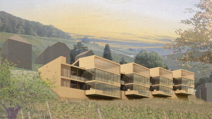 Siegerprojekt: In dieser Form sollen die vier verbundenen Baukörper mit acht Wohnungen an den Abhang an der Goldwand gestellt werden. (zvg)