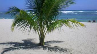 Ein Ausschnitt aus Tanja Enseroths temporärem Paradies: Sandstrand am Karibischen Meer.