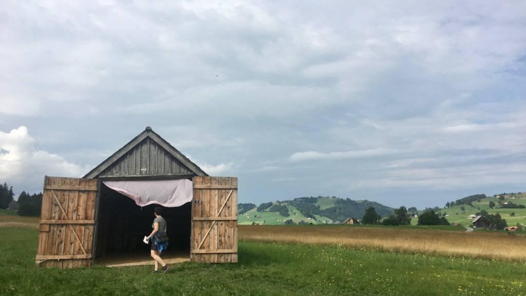 Riedgras-Scheunen voller Klangkunst in Gais
