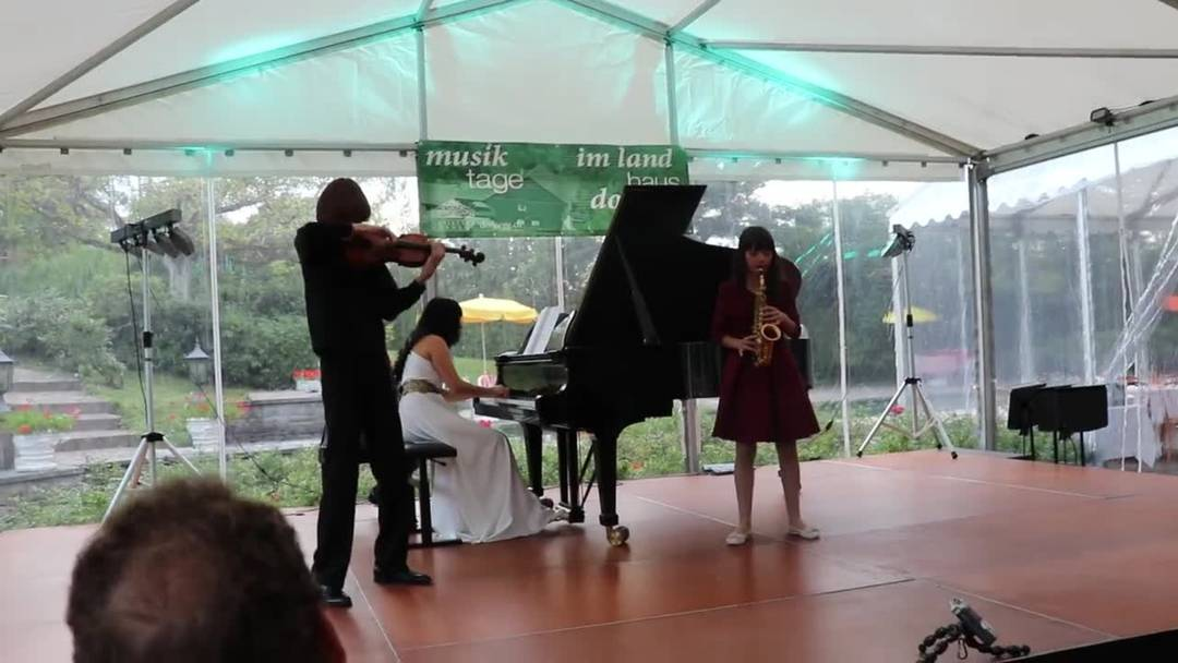 Ljuba Manz veranstaltete vom 6. bis 9. September die dritten Musiktage in ihrem Landhaus Dornegg in Unterkulm.