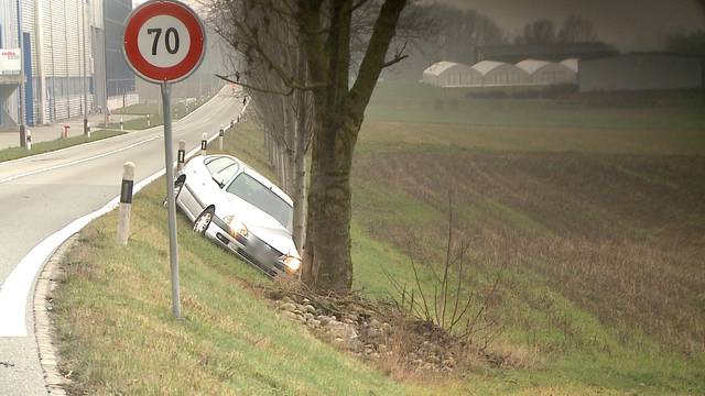 Dottikon/Anglikon:  Tödlicher Selbstunfall – Polizei vermutet medizinische Ursache