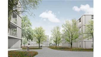 Die Visualisierung zeigt, wie die Überbauung Grosse Kreuzzelg dereinst aussehen soll. Das Gebiet grenzt direkt ans Neugrüen-Quartier. ZVG
