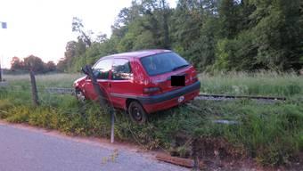 Der Lenker wollte einem Tier ausweichen, geriet mit seinem Wagen dann aber ins Schleudern.
