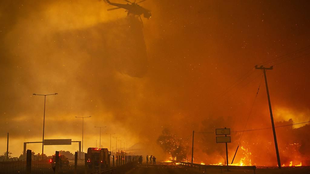 Dramatische Szenen in griechischen Brandgebieten